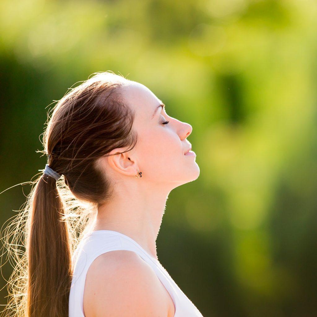 Quiet Contemplation | Mindfulness Teacher Register